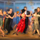 Lady Tango Partner Needed, Professional Level, for Teaching, Practicing, Studying, Working Together